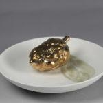 Piante Bronze 1